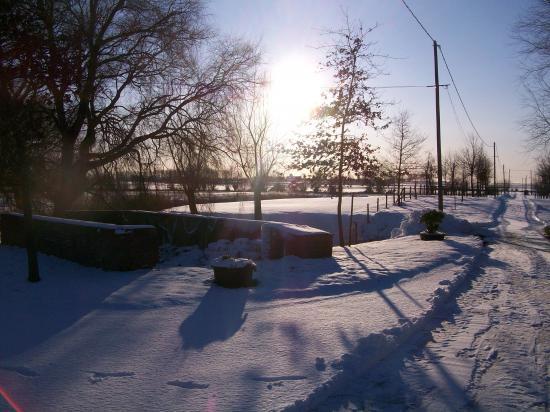 cour en hiver